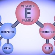 graphic, breakdown of Vitamin E family