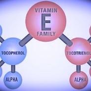 graphic, breakdown of Vitamin E family