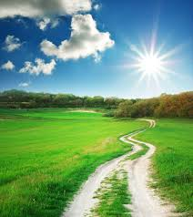 photo of green meadow and path leading into bright sunlight